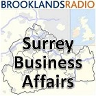 Surrey Bisiness Affairs Pod Image
